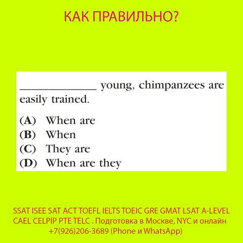 Курсы SSAT, ISEE, SAT, ACT, TOEFL, TOEIC преподаватель, репетитор из США - 4